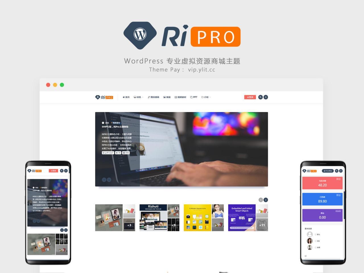 【资源主题】专业虚拟资源商城主题——RiPro插图