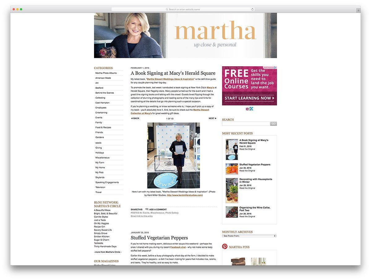 themarthablog-book-author-wordpress博客